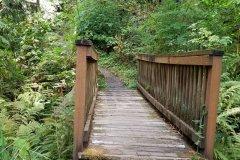 20180908_143518-Bridge-to-Possibilities