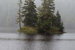 IMG0624-Twin-tree-Island