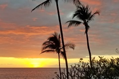 20190108_180132-Kona-Sunset