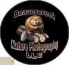 Beavercreek Logo